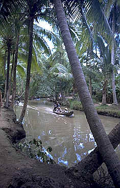 A boat on a Jungle River